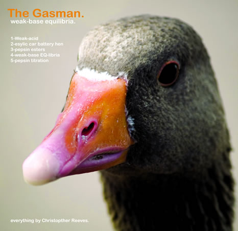CF008 - The Gasman - Weak-Base Equilibria EP